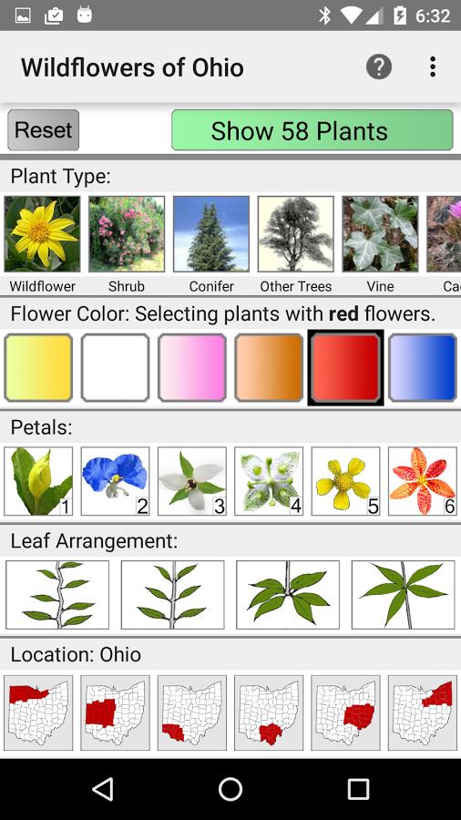 Ohio Wildflowers.
