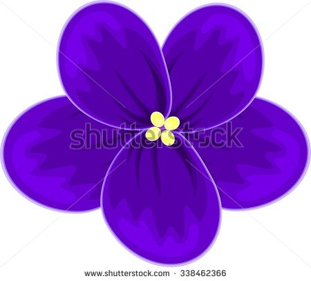 African Violets Stock Photos, Royalty.