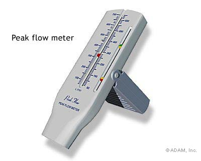 Peak Flow Meter Use in a 5 year.