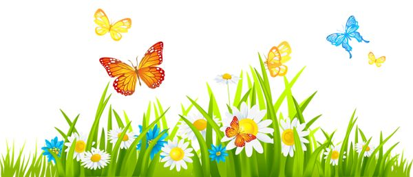 Spring flower and butterfly clipart.