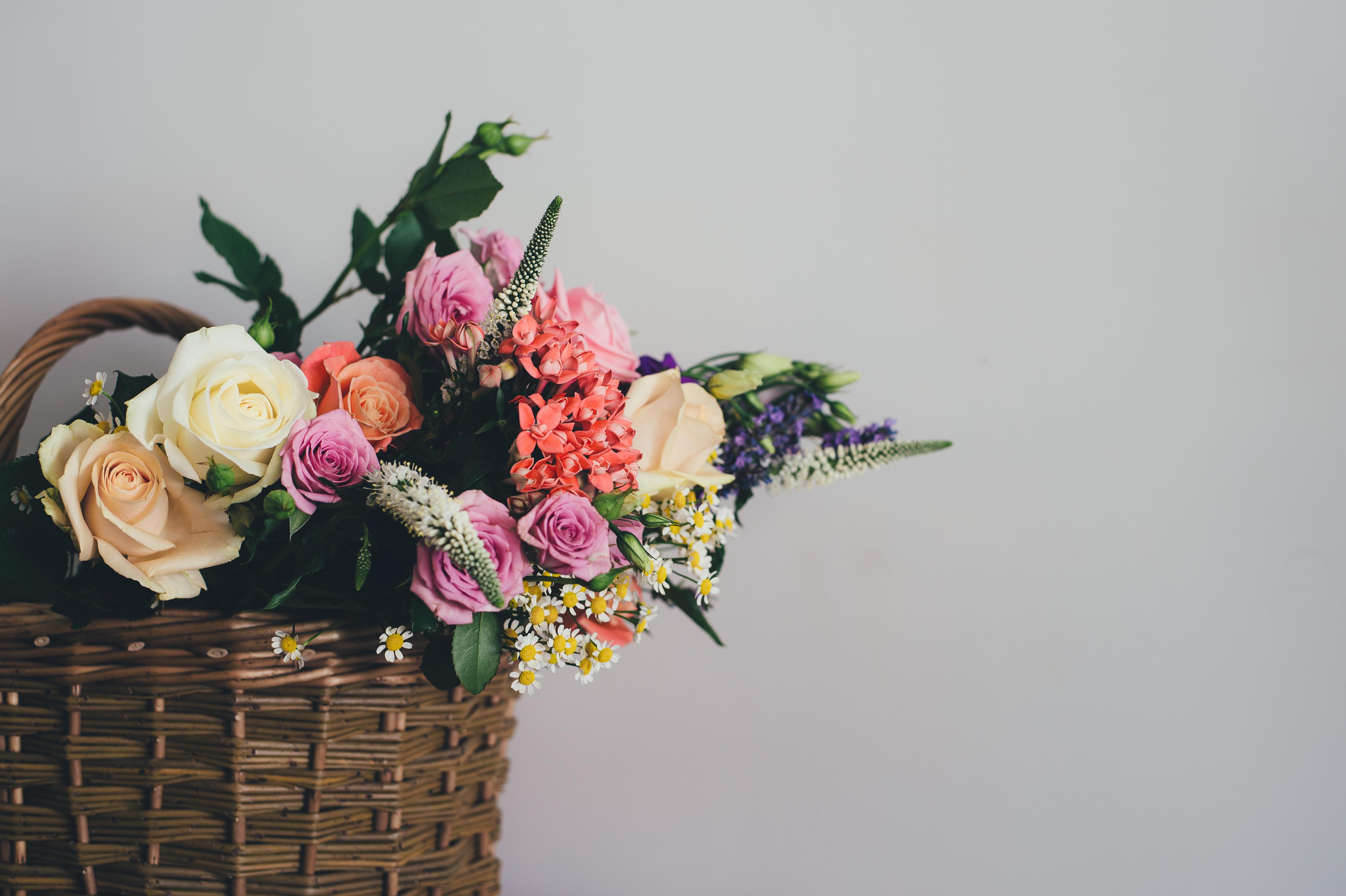 Free stock photos of flower arrangement · Pexels.