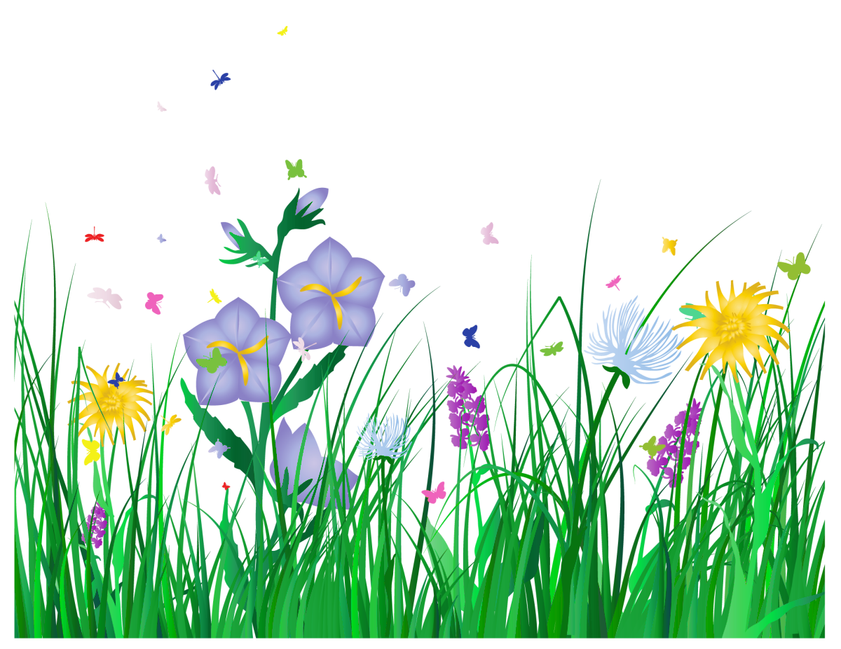 Free flower clipart transparent background.