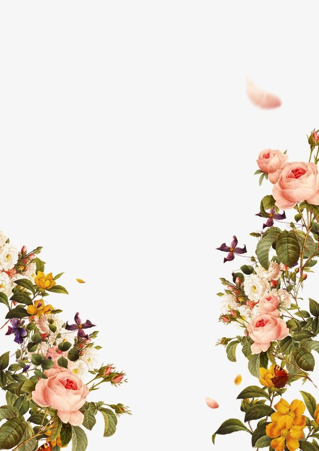 Flowers, Flowers Border, Painted Flowers, Flowers Background PNG.