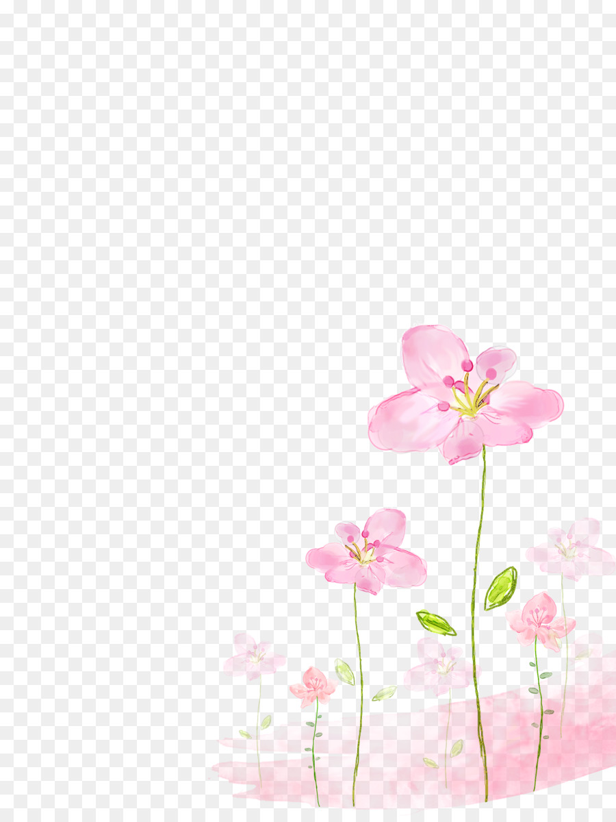 Flower Background Png (99+ images in Collection) Page 1.