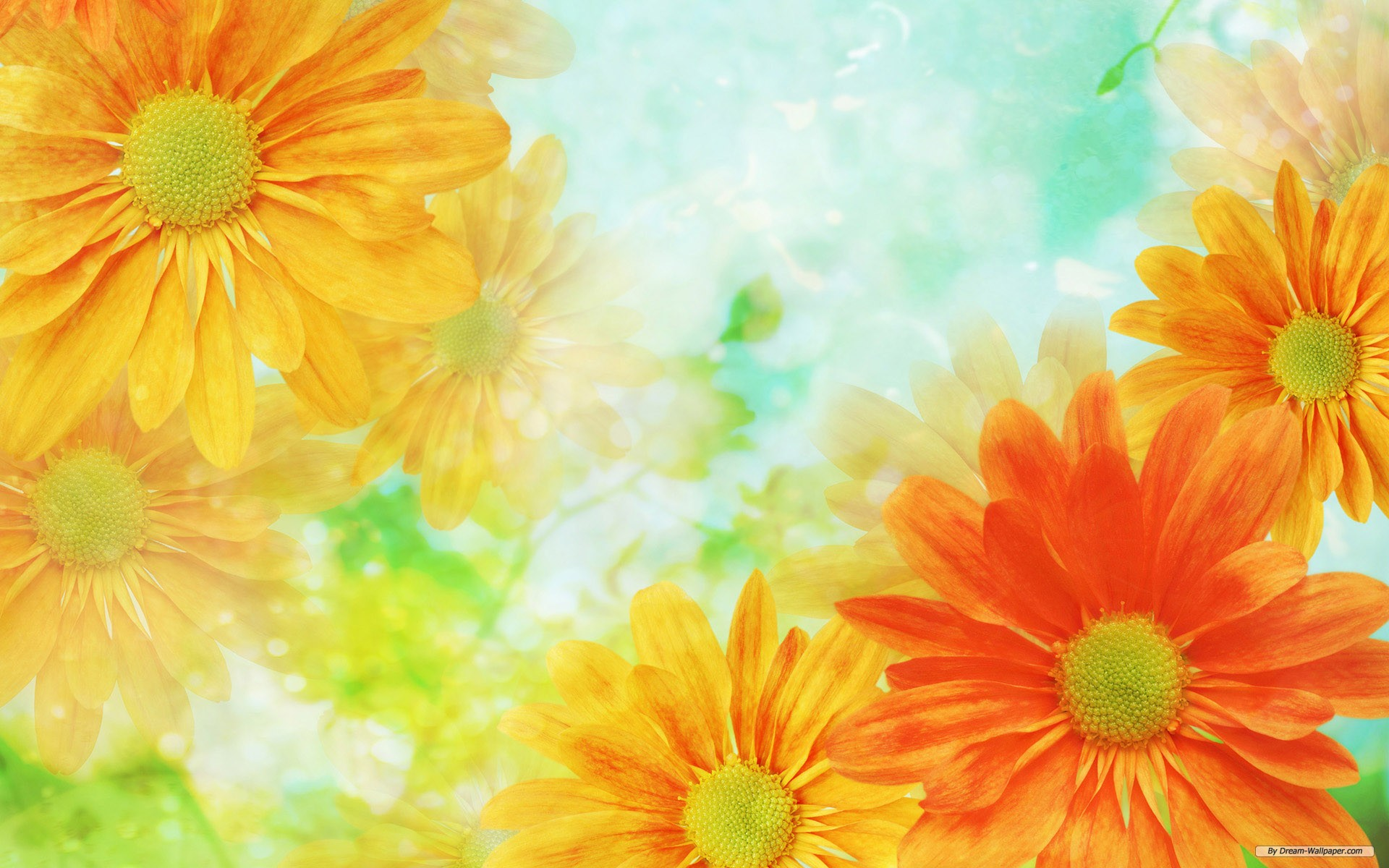 Flower Background Wallpaper.