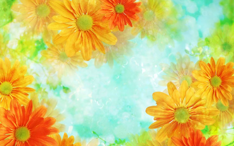 169+ Flower Backgrounds, Wallpapers, Pictures, Images.
