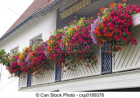 Pictures of Balcony with Flowers.