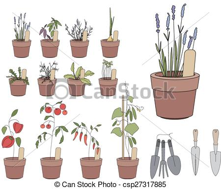Vector of Flower pots with herbs and vegetables. Gardening tools.