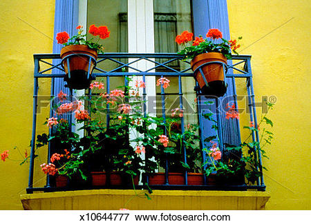 Picture of Colorful flowers on the balcony of a house.