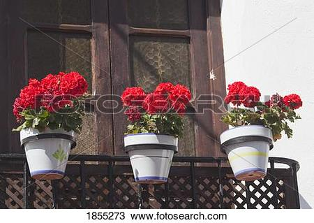 Stock Photo of Three flower pots on balcony; Marbella, Malaga.