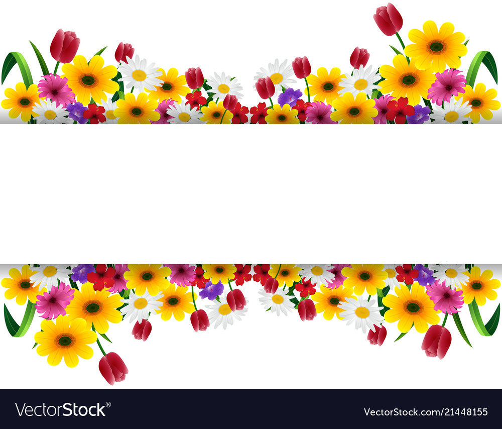 Tropical flowers banner.