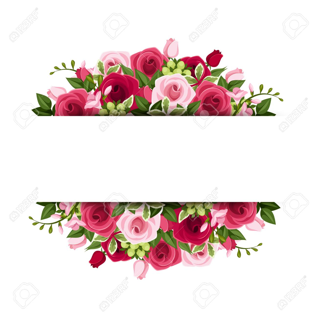 Vector banner with red and pink roses and freesia flowers..