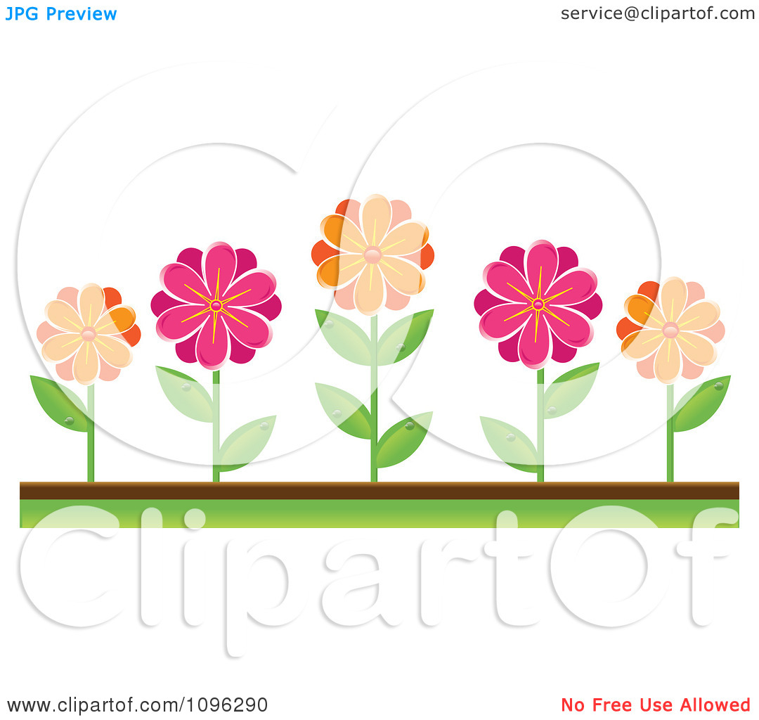 Clipart Pink And Orange Daisies In A Flower Bed.