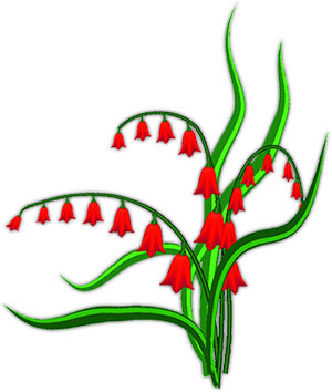 Flowering Plant Gifs.