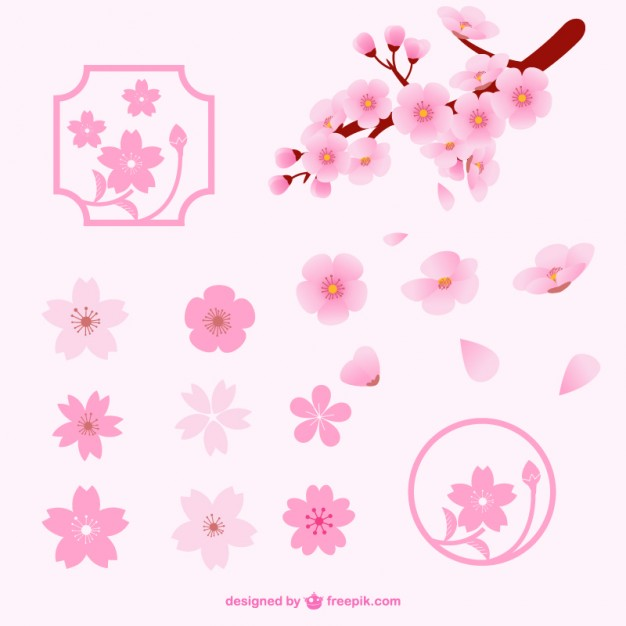 Cherry Blossom Vectors, Photos and PSD files.
