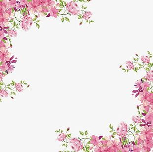 Flowers Borders PNG Images, Flowers Borders Clipart Free Download.