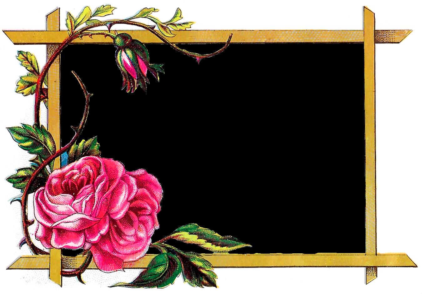 Download Flower Border Design Clipart Floral Design.