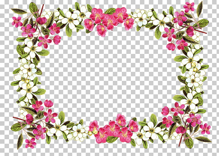 Flower Rose , Floral Frame , white and pink petaled flowers.