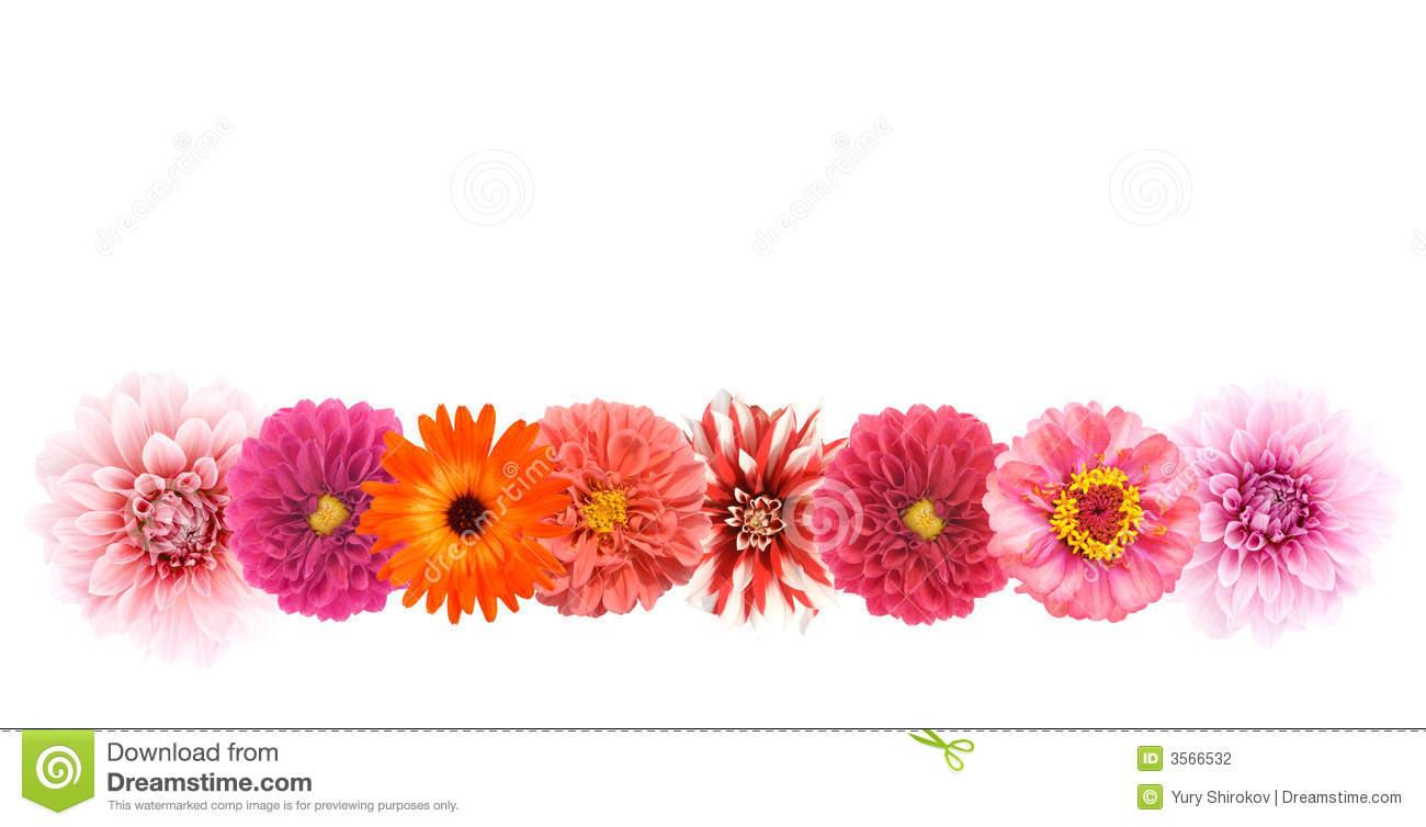 Flower Border Line Design.