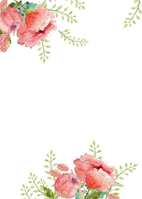 flower-borders-free-13 Letter Box Template For Size on file storage, archival document, polypropylene file, cardboard storage, hanging file, portable file, portable wood looking file,