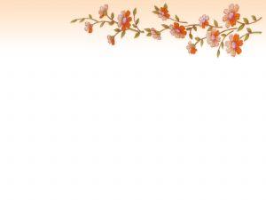 Flower borders Photo.