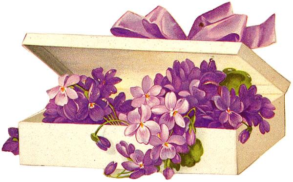 Flowers box clipart.