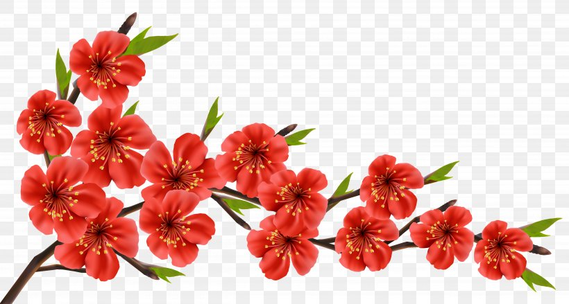 Flowery Branch Clip Art, PNG, 5054x2706px, Flower, Blossom.