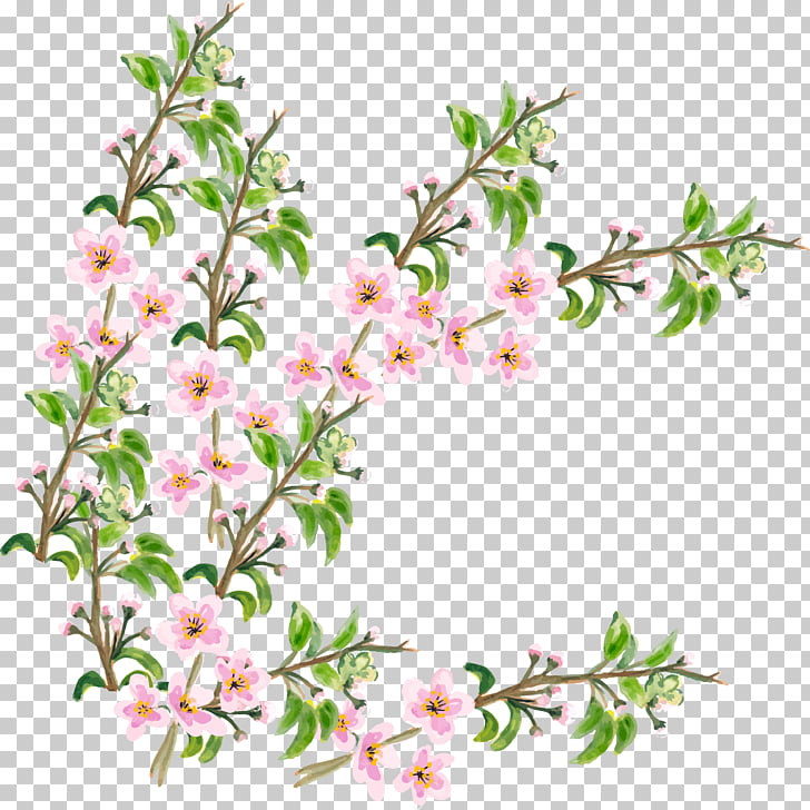 Flower Cherry blossom, hand painted pink flower branch PNG.