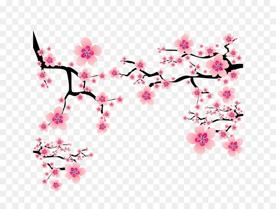 Cherry Blossom PNG HD Transparent Cherry Blossom HD.PNG Images.