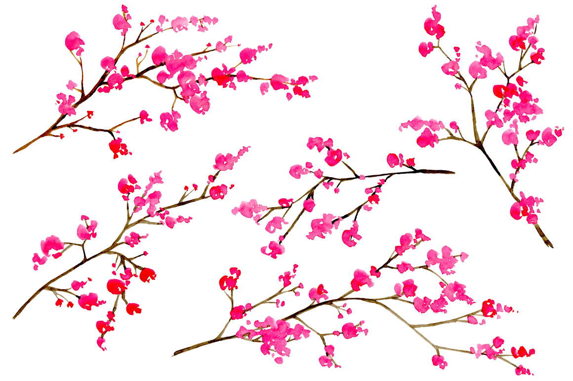 Watercolor floral branches, 10 png.