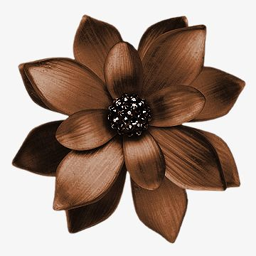 Beautiful Brown Flowers, Pretty, Brown, Flowers PNG.