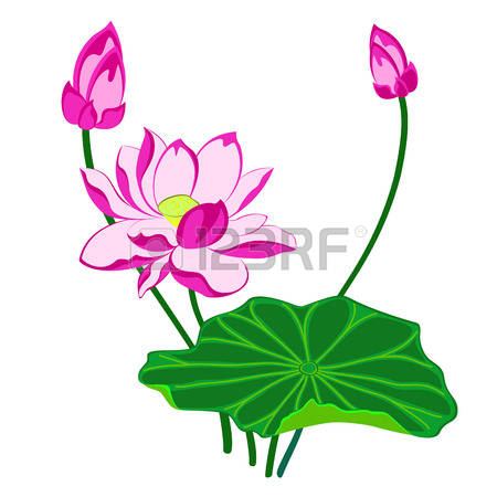 44,095 Flower Bud Stock Vector Illustration And Royalty Free.