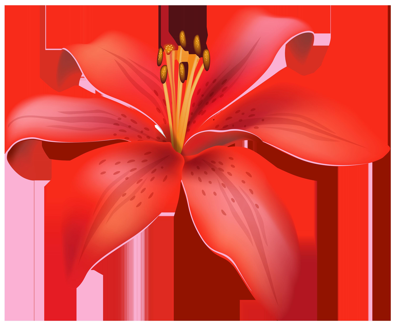Flower capsules clipart #2