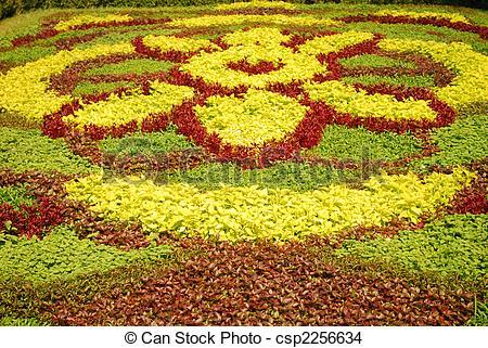 Stock Photo of Flower Carpet.