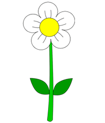 Cartoon Flower Step by Step Drawing Lesson.