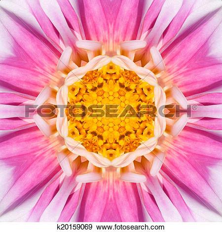 Stock Illustration of Pink Concentric Flower Center Mandala.