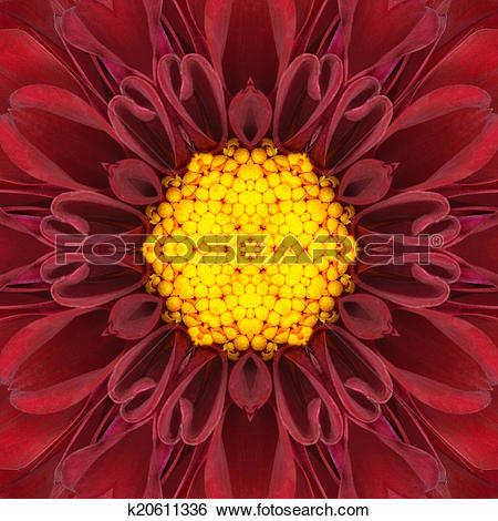 Stock Images of Red Mandala Concentric Flower Center Kaleidoscope.