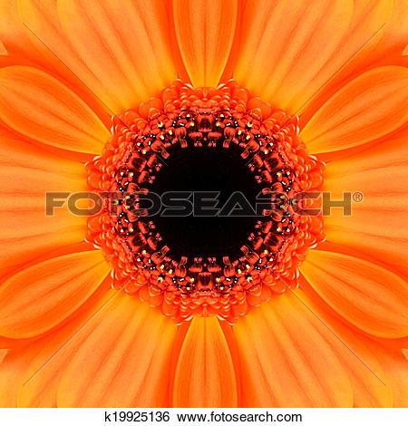 Stock Illustration of Orange Concentric Flower Center Mandala.
