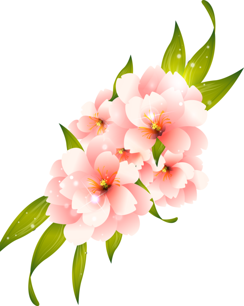 Flower Png Clipart For Photoshop.