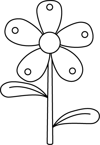 Black and White Garden Flower.