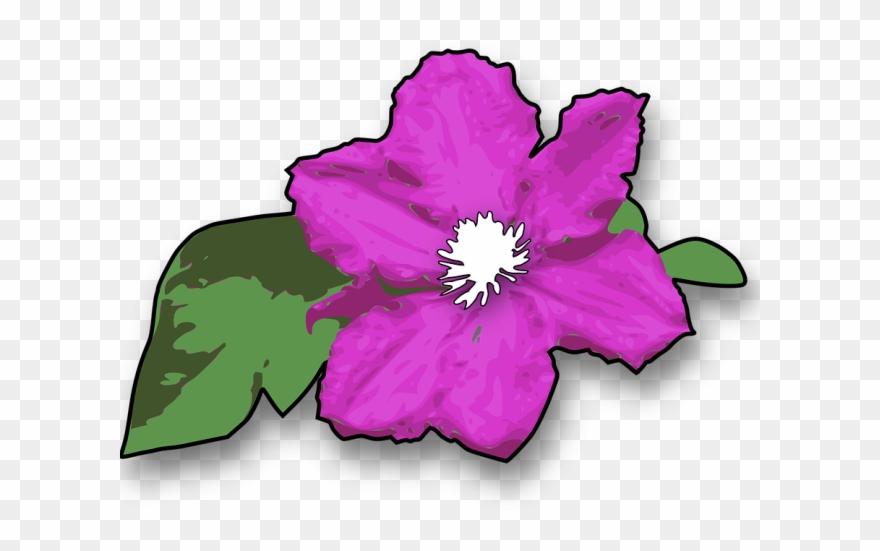 Purple Flower Clipart Purple Plant.