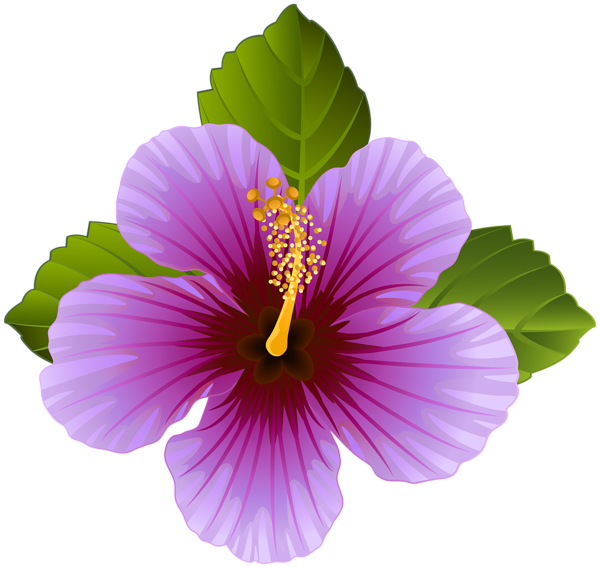 Purple Flower Transparent Clip Art Image.