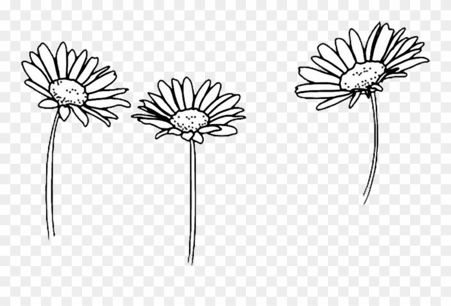 Amazing Flower Tumblr Castrophotos Clipart (#2752243.
