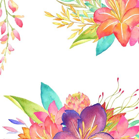 Tropical watercolor flower clipart, tropic summer png.