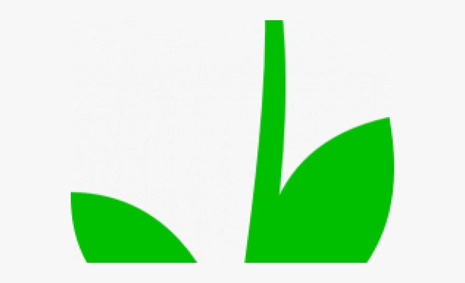 Stem Clipart Stem And Leaf.