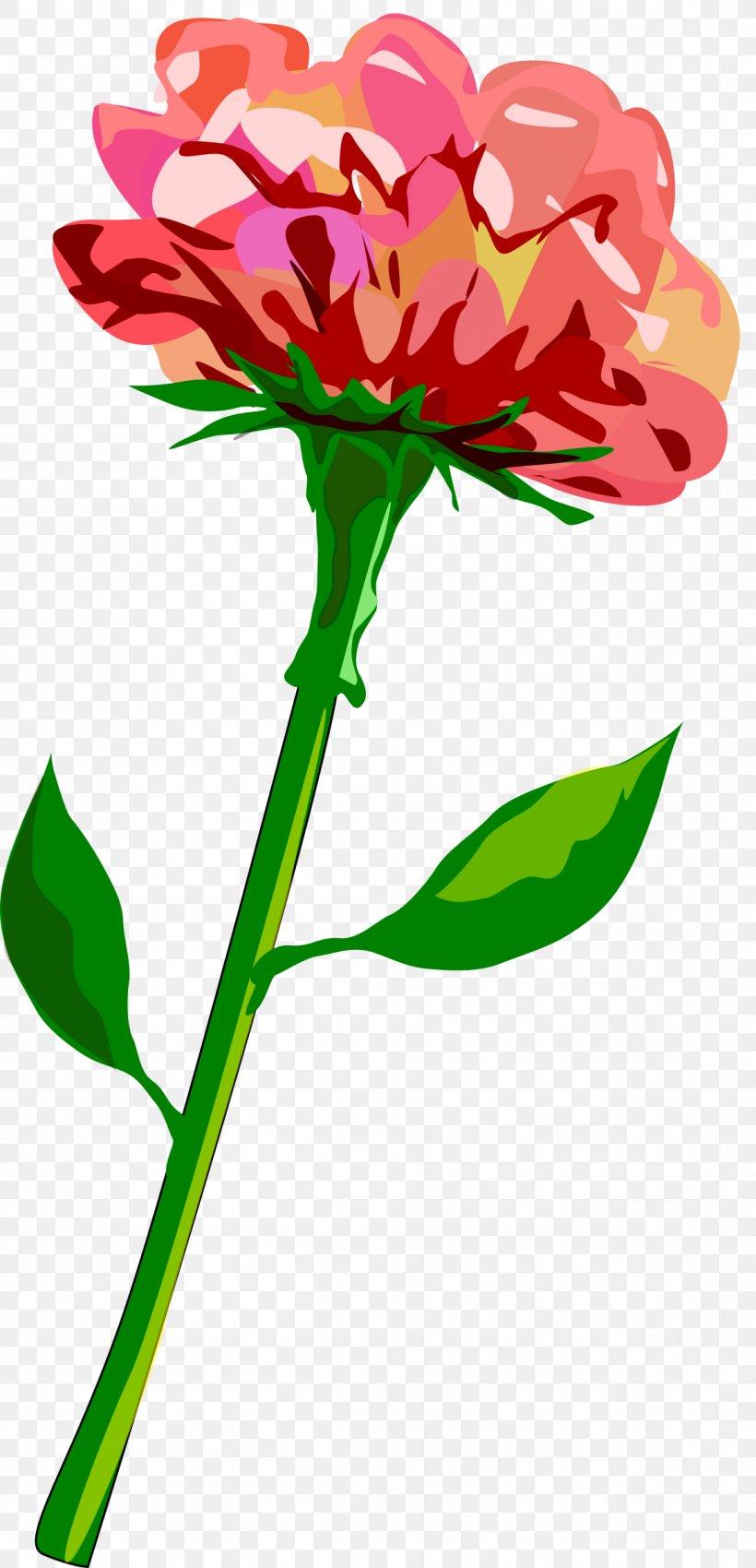 Plant Stem Flower Tulip Clip Art, PNG, 1157x2400px, Plant.