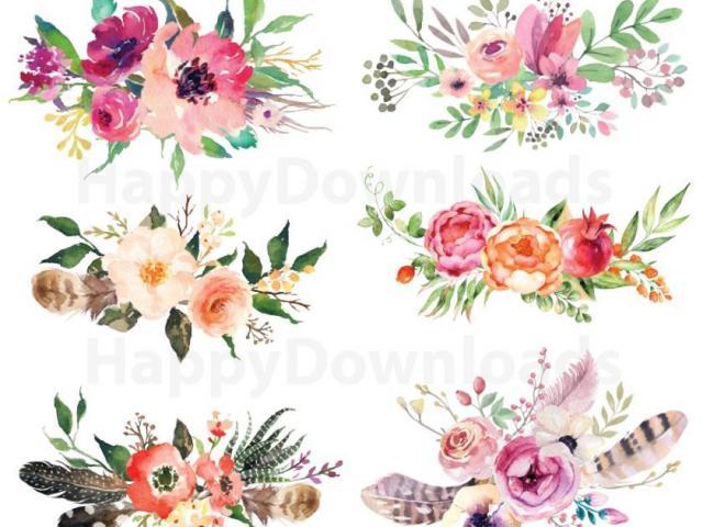 Peonies clipart flower cluster, Peonies flower cluster.