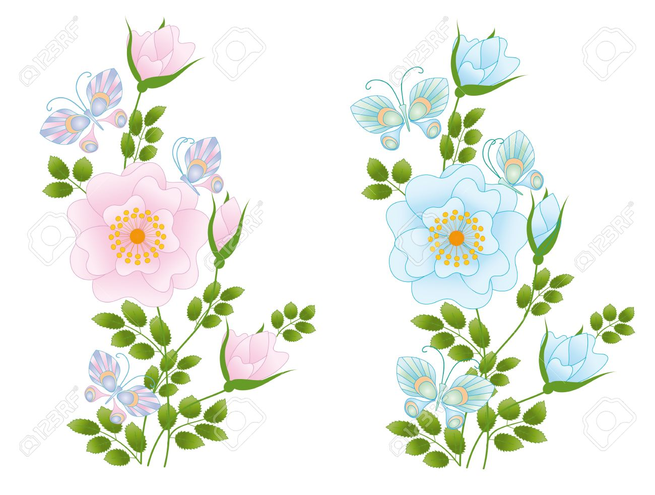 Composition Of Wild Rose And Butterflies Royalty Free Cliparts.
