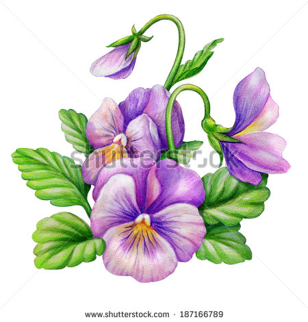 Watercolor Clip Art Flowers Stock Images, Royalty.