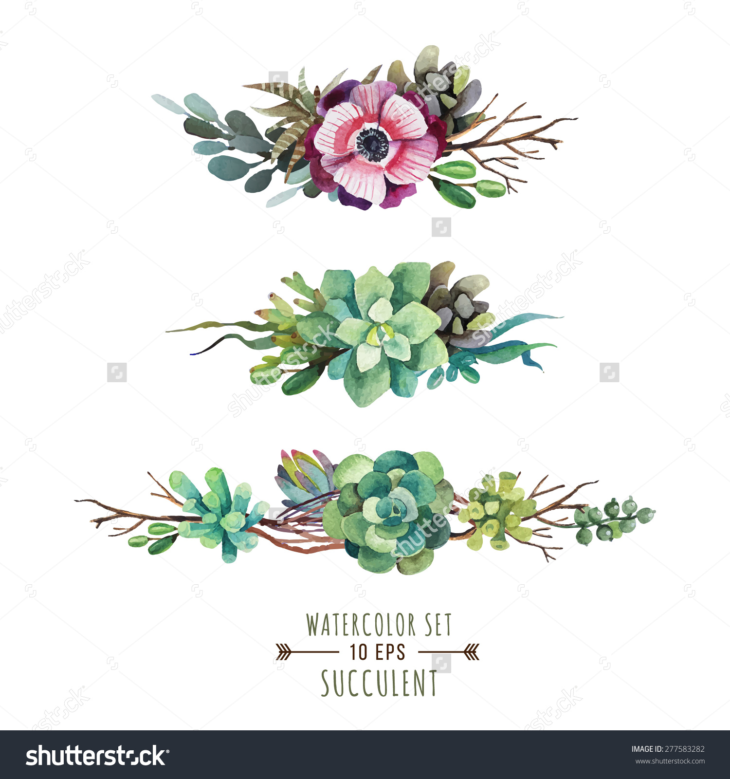 Set Floral Compositions Watercolor Style Composition Stock Vector.